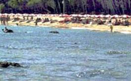 spiaggia-lesina-1