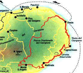 11.ITINERARIO 10 - TRA OLIVI E PINETE1