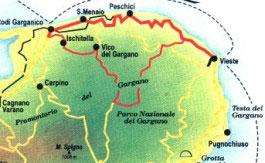 3.ITINERARIO 3 - IN MEZZO ALLE PINETE1