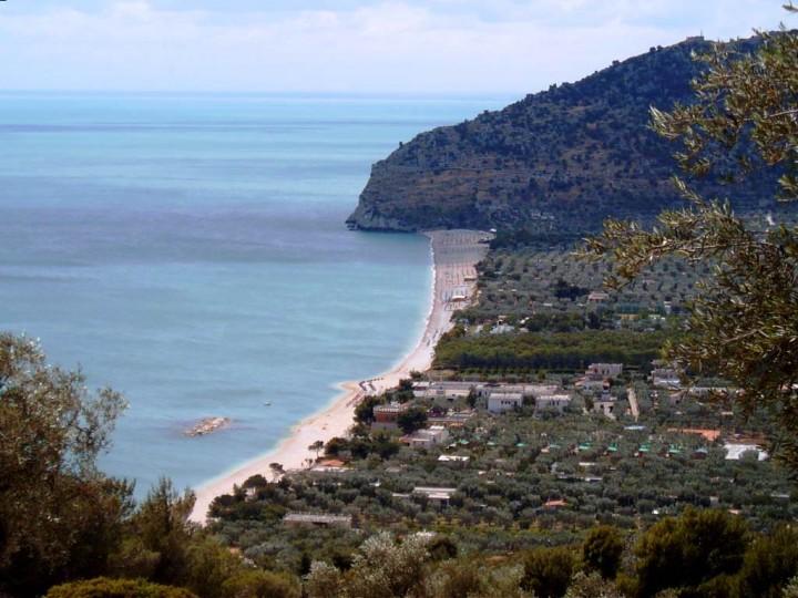 La spiaggia di Mattinata