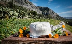 I sapori del Gargano in masseria @ B&B Villa Simone | Monte Sant'Angelo | Puglia | Italia